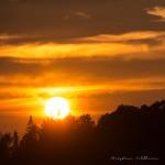 Solnedgang over Byneset