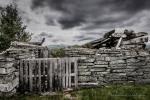 Gamle setertufter på Venabygdsfjellet